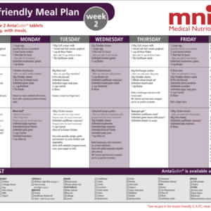 Health living weekly meal planner guide